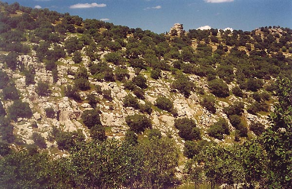 TURKEY 2001 - expedition